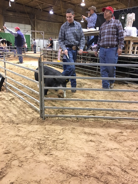 Jacob Kettner at stock show